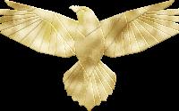 [Trends] Foil wings