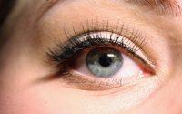 Trends: Eyelash fan